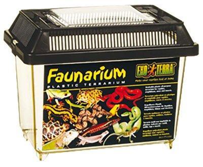 Plast terrarium